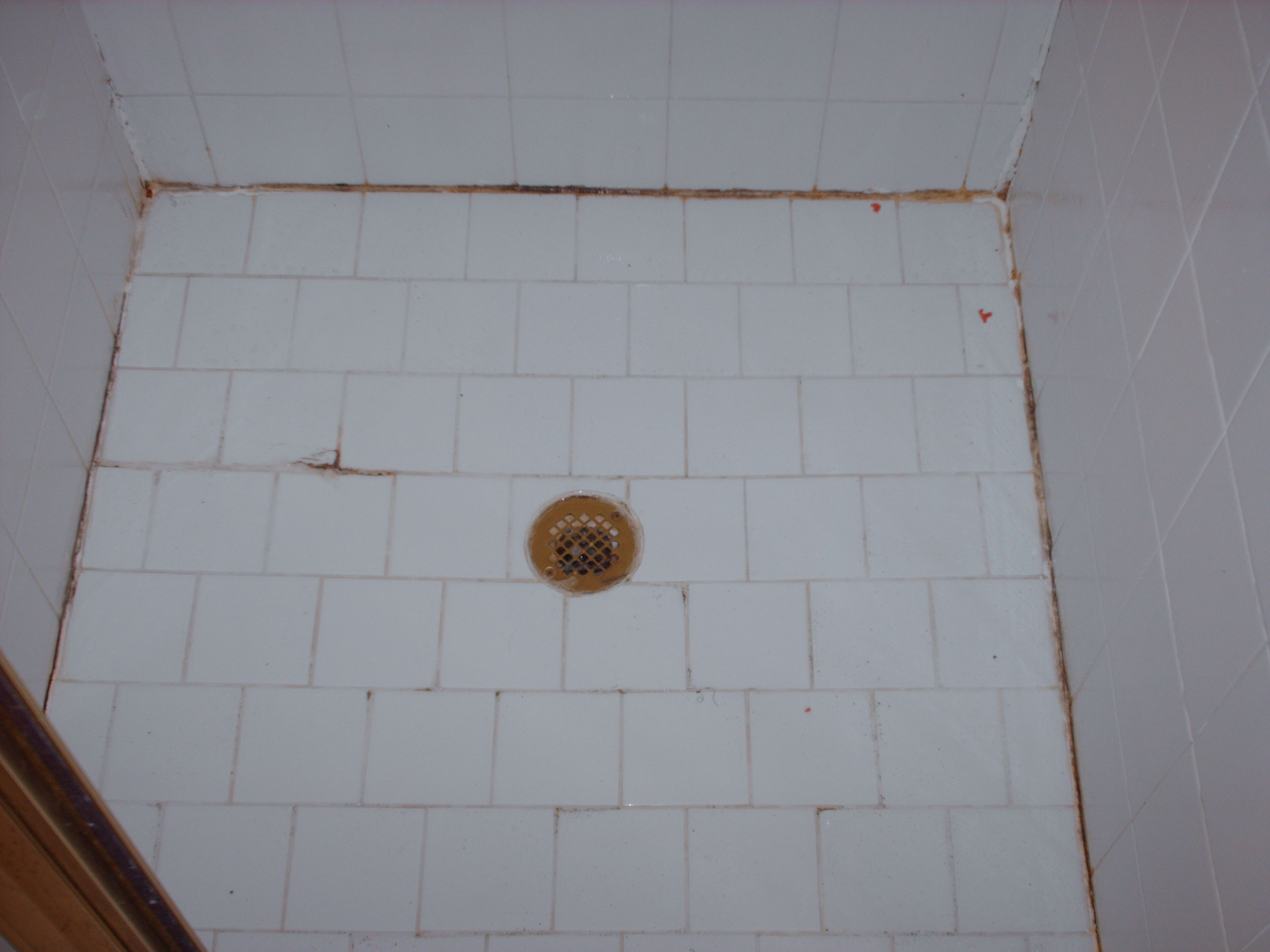 Carolina grout works showers before after carolina grout for How to make grout white again